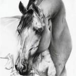 طراحی عکس حیوانات با مداد (۴)